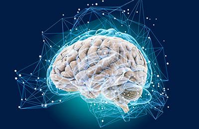 Как защитить мозг от старения?