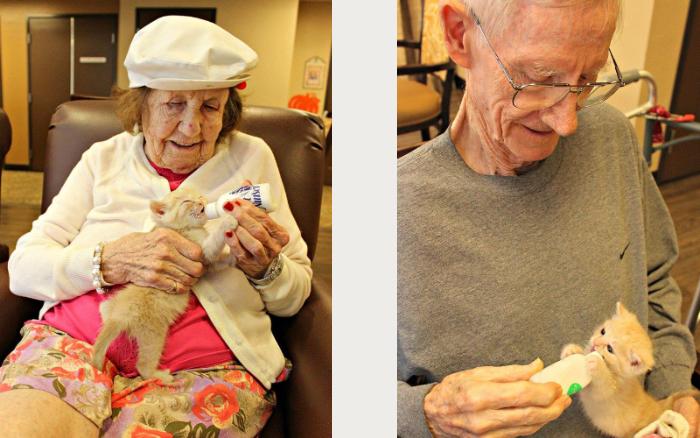 Дом престарелых объединился с приютом для животных. Аризона, США